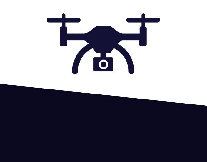 DRONE<br>  SURVEYS